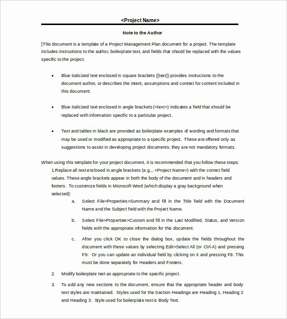 Project Management Template Word Unique 17 Project Template Doc Pdf Ppt