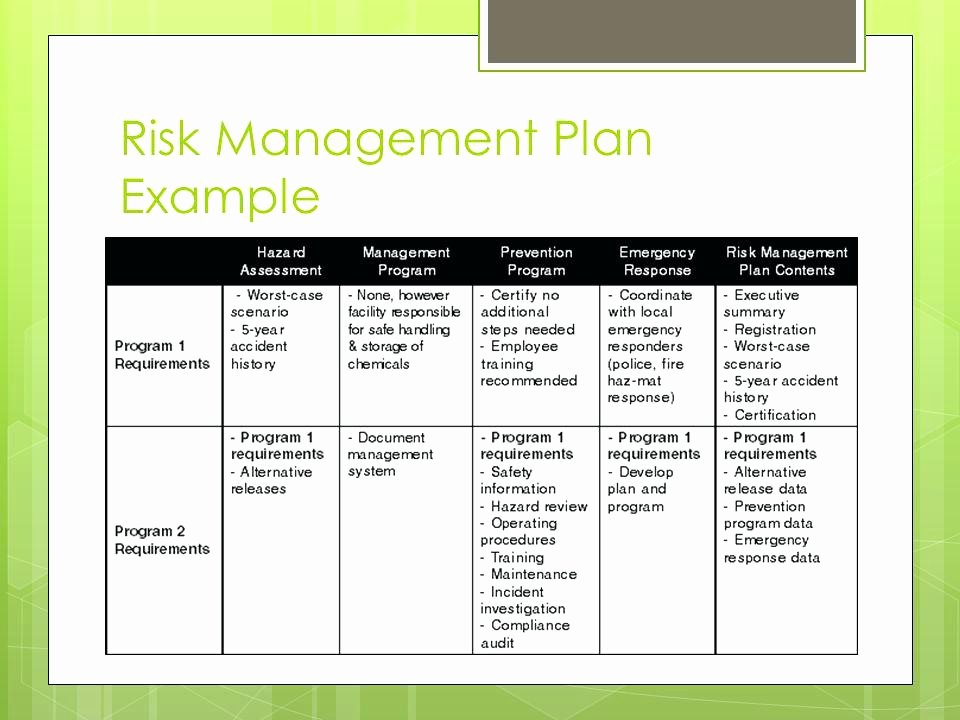 Project Management Word Template Inspirational Project Management Risk Management Plan Template