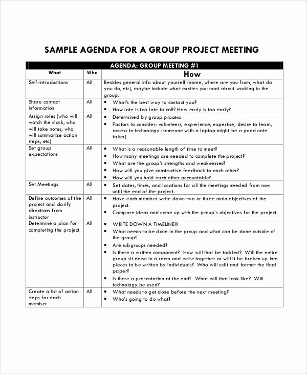 Project Meeting Minutes Template Lovely Project Agenda Template 6 Free Word Pdf Documents