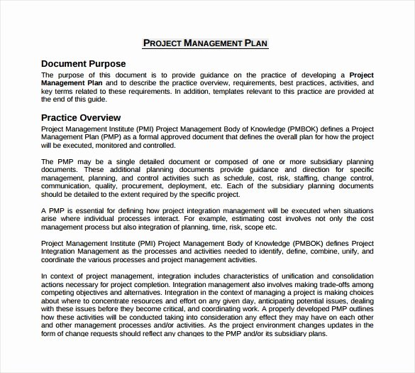 Project Plan Outline Template Beautiful 19 Useful Sample Project Plan Templates to Downlaod