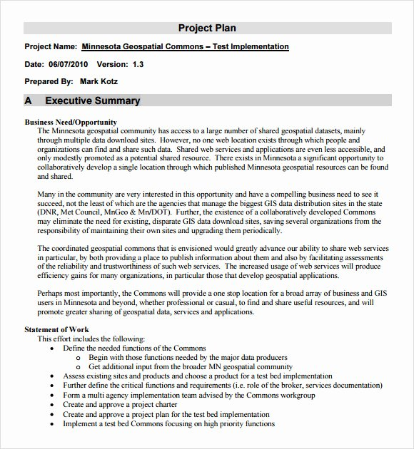 Project Plan Outline Template New Project Outline Template 9 Download Free Documents In
