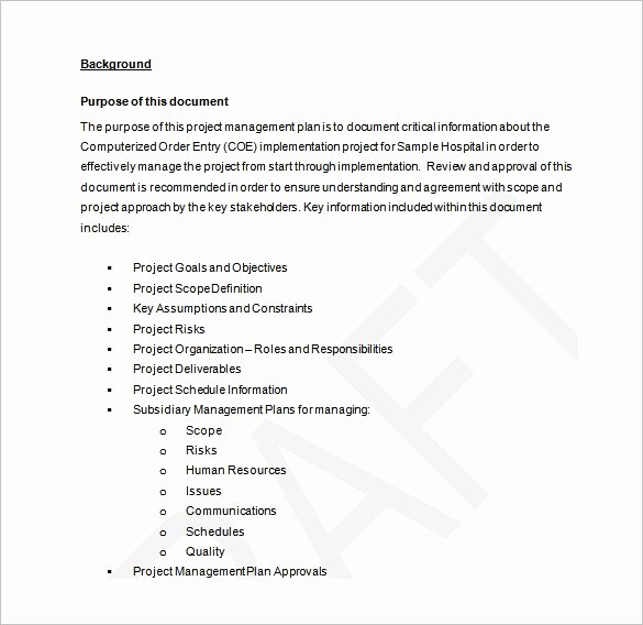 Project Plan Template Word Best Of 16 Project Management Plan Templates Free Sample