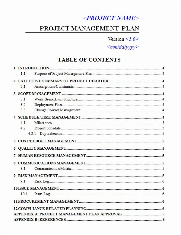 Project Plan Template Word Luxury 19 Useful Sample Project Plan Templates to Downlaod