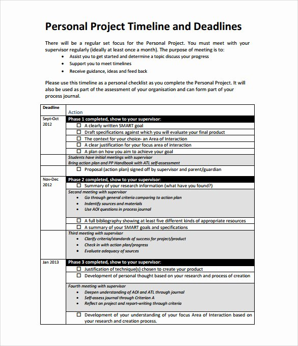 Project Plan Template Word Unique Sample Project Action Plan Template 16 Documents In Pdf