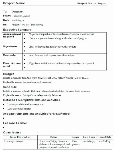 Project Proposal Template Google Docs Inspirational Project Status Executive Summary Template Sample Summaries