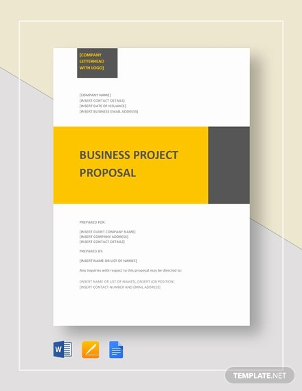 Project Proposal Template Google Docs Lovely Training Project Proposal Template Download 134