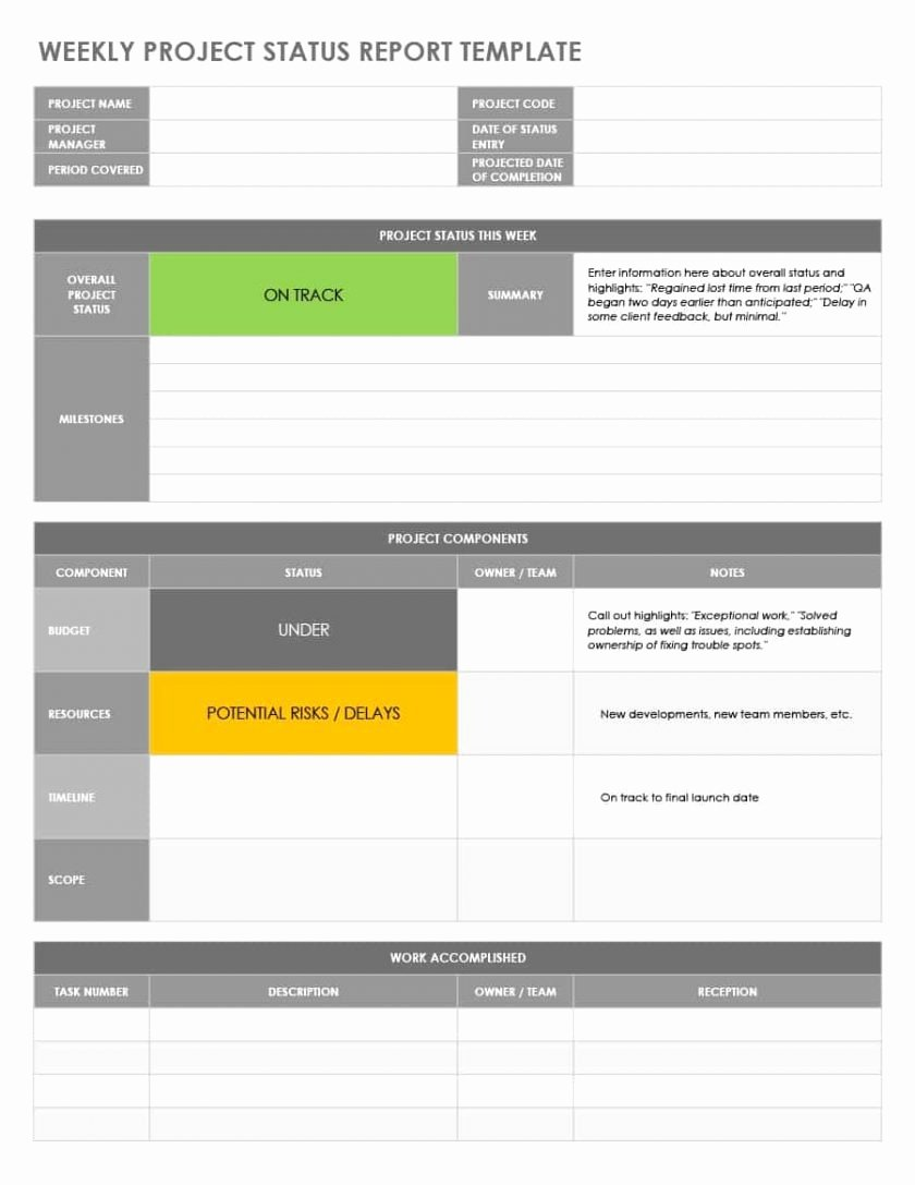 Project Status Report Template Excel Best Of Project Status Report Template