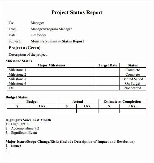 Project Status Report Template Excel Lovely Project Status Report Template Excel Download Filetype Xls