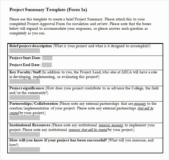Project Template Microsoft Word Unique 9 Project Summary Templates for Free Download