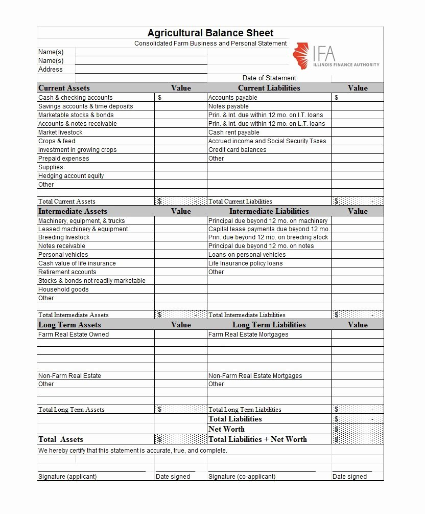 excel in e statement and balance sheet template maggi 10