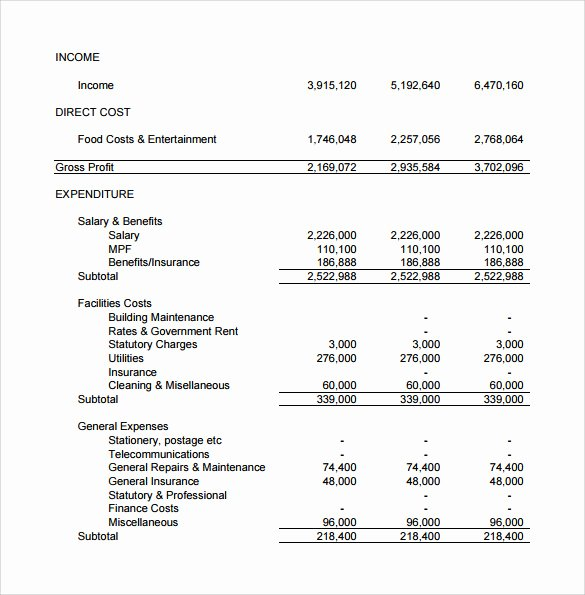 Projected Income Statement Template Elegant 12 Projected In E Statement Templates