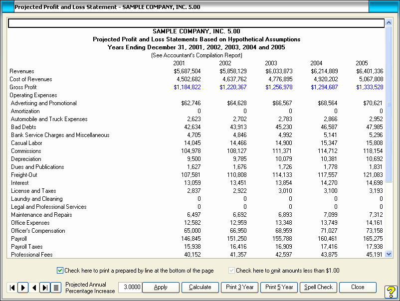 Projected Income Statement Template Inspirational Profit and Loss Statement