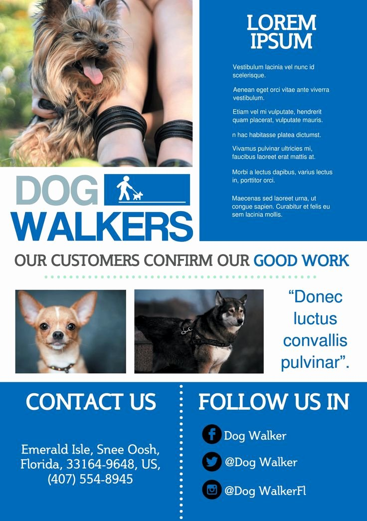 Promotional Flyers Template Free Inspirational Best 25 Dog Walker Flyer Ideas On Pinterest