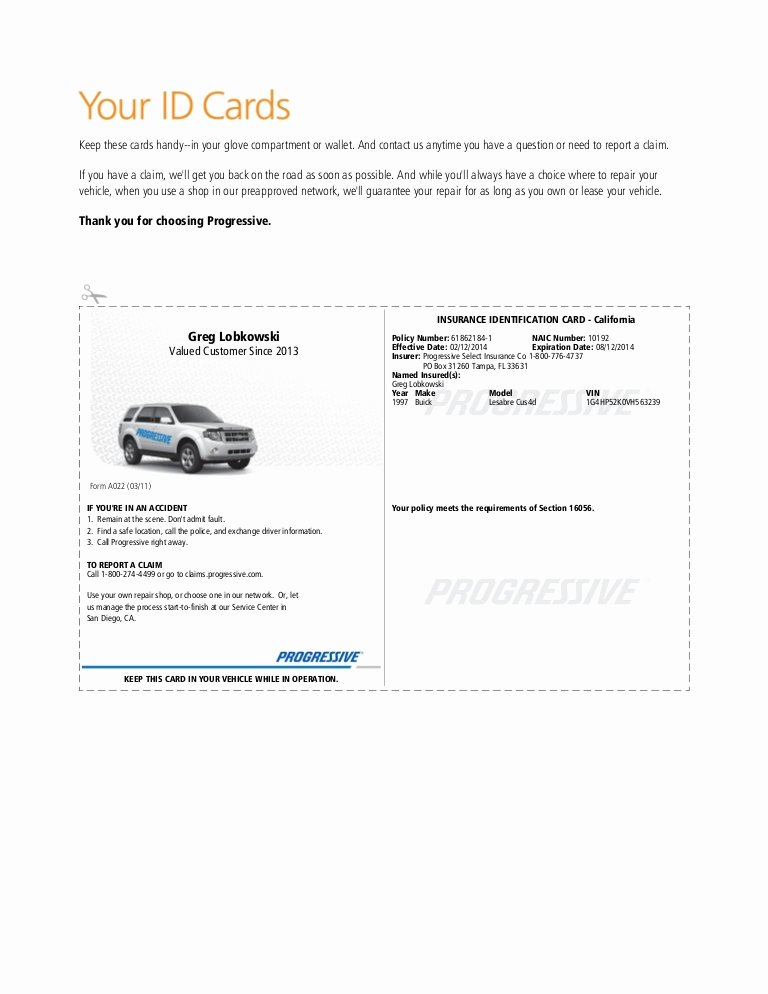 Proof Of Car Insurance Template New Pgr Insurance Idcard 1