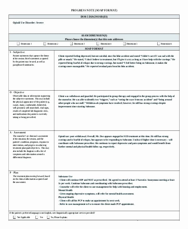 Psychotherapy Note Template Word New Mental Health Treatment Plan Template Word Psychotherapy