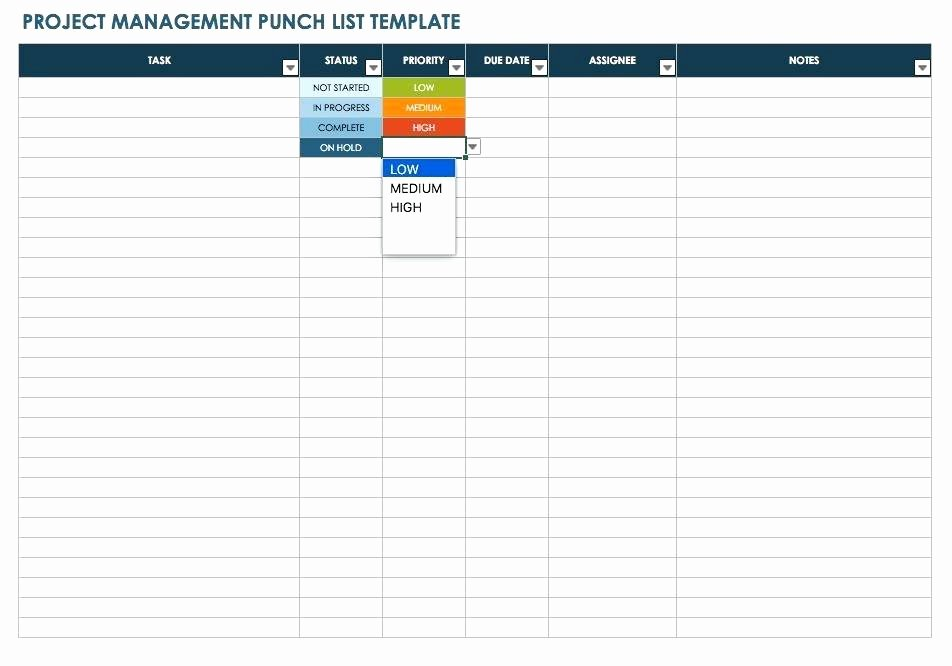 Punch List Template Pdf Unique Punch List Template Pdf Project Management Punch List