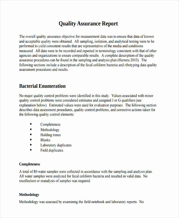 Quality assurance Report Template Lovely 10 Quality Report Examples Samples