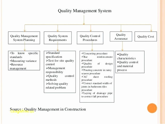 Quality Control Program Template Luxury 11 Quality Management Plan Examples Pdf Word