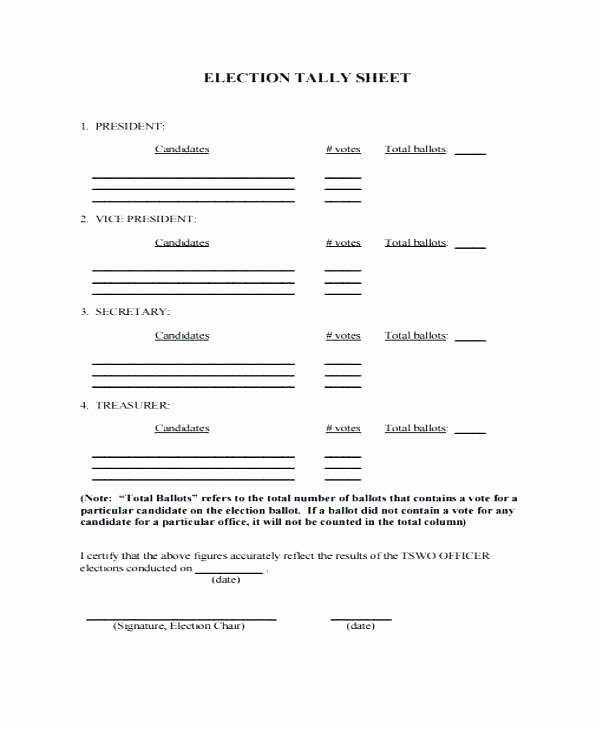 Raffle Entry form Template New Petition Entry form Template Word Blank Ballot