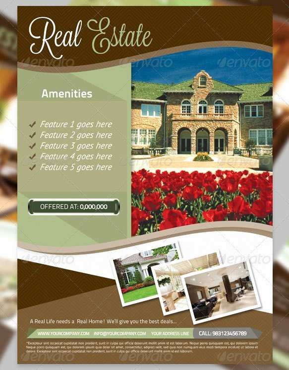 Real Estate Flyer Template Word Beautiful 13 Real Estate Flyer Templates Excel Pdf formats