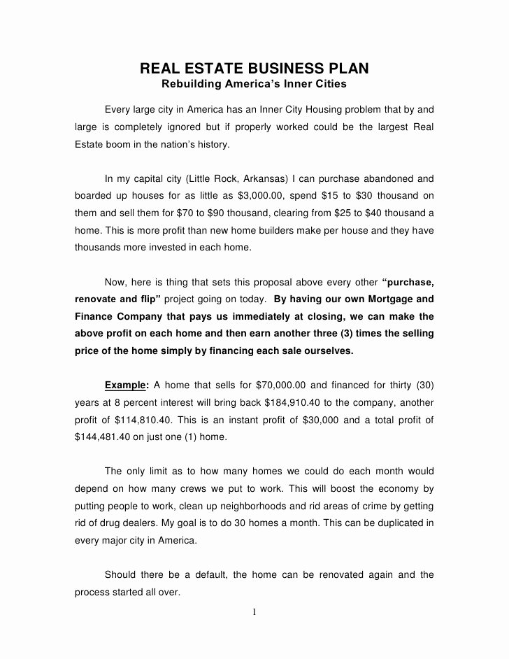 Real Estate Investment Proposal Template Lovely Real Estate Business Plan