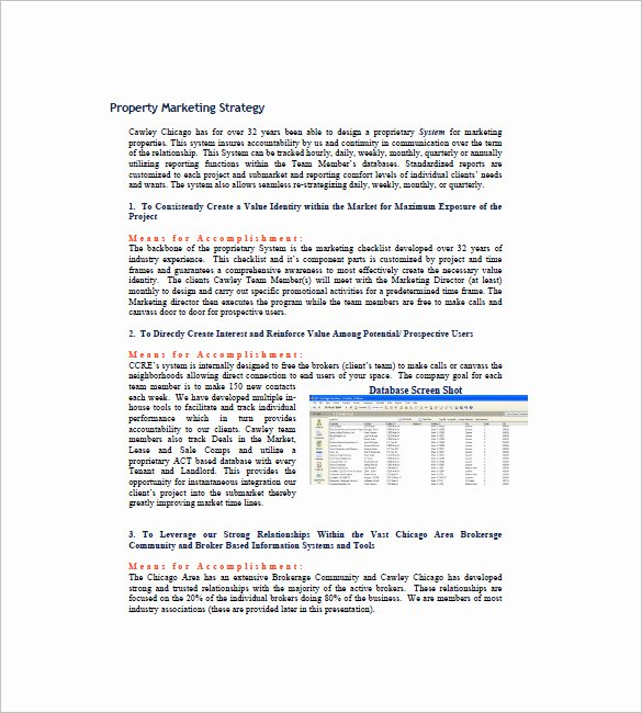 Real Estate Marketing Plan Template New 15 Real Estate Marketing Plan Free Sample Example