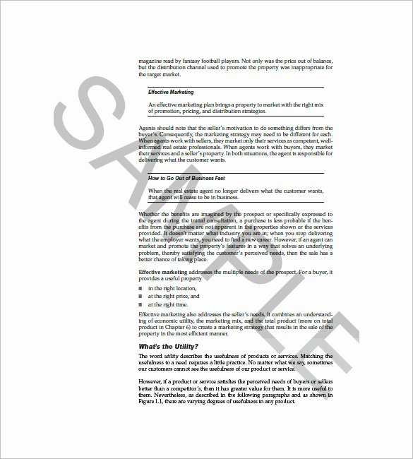 Real Estate Marketing Plan Template New 8 Sales and Marketing Plan Templates Doc Pdf