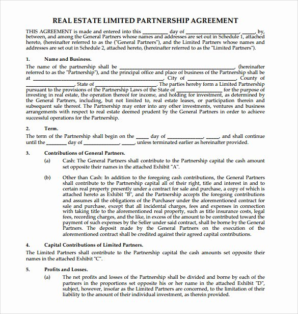 Real Estate Partnership Agreement Template New Sample Real Estate Partnership Agreement 10 Free