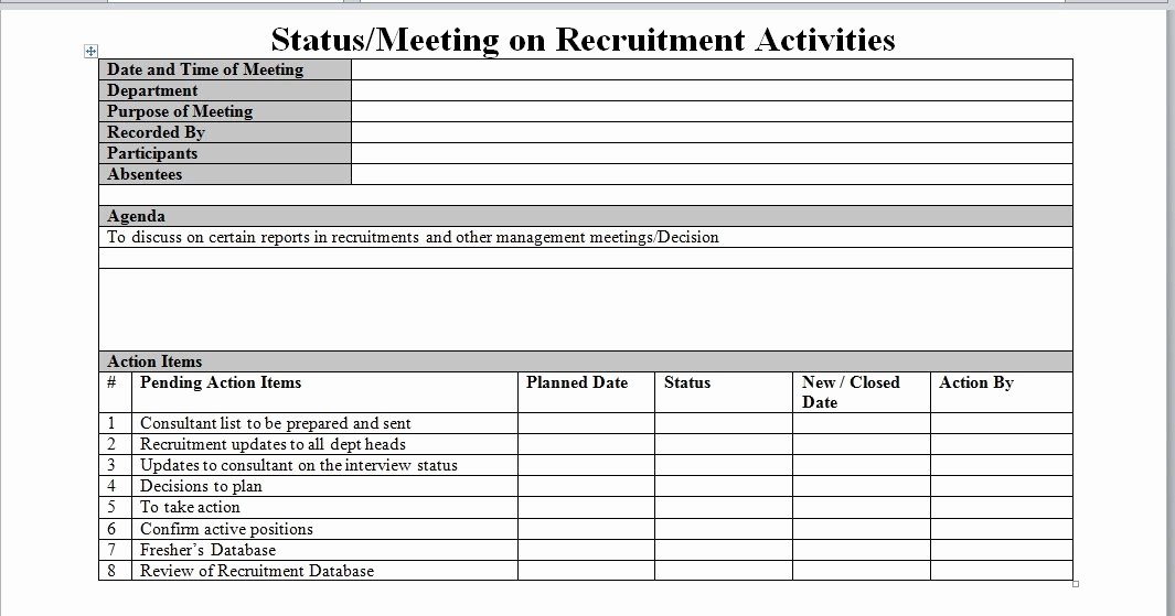 Recruitment Plan Template Excel Luxury Recruitment Process Report