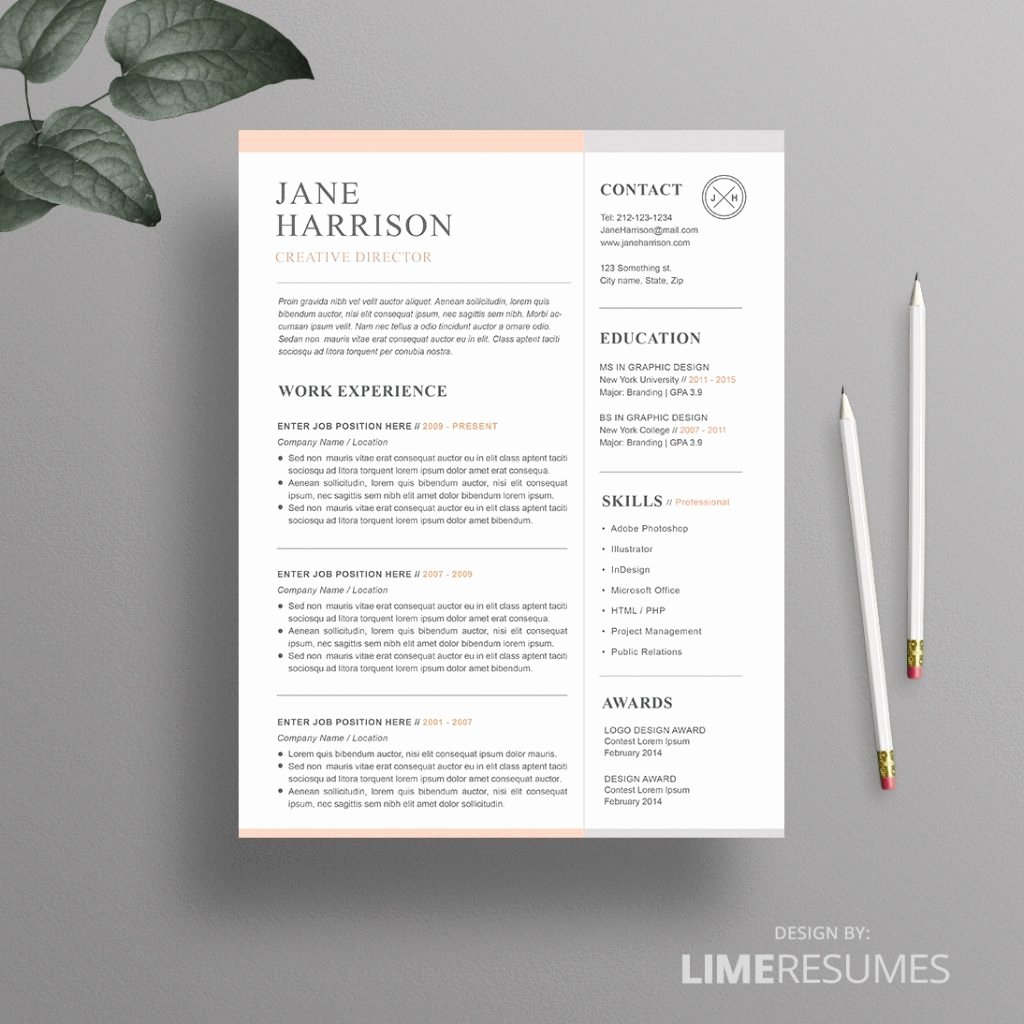 Resume Template for Mac Awesome Resume Template Downloades Resume Templates Template Mac