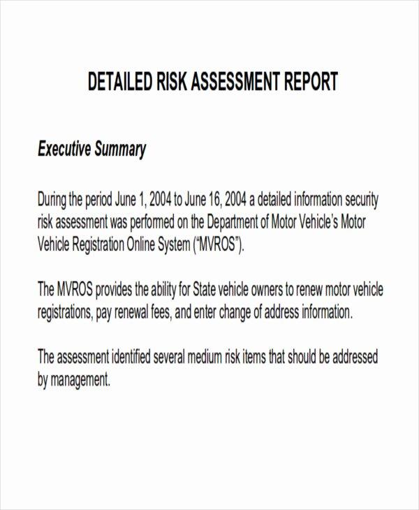 Risk assessment Report Template Luxury 8 assessment Report format Samples