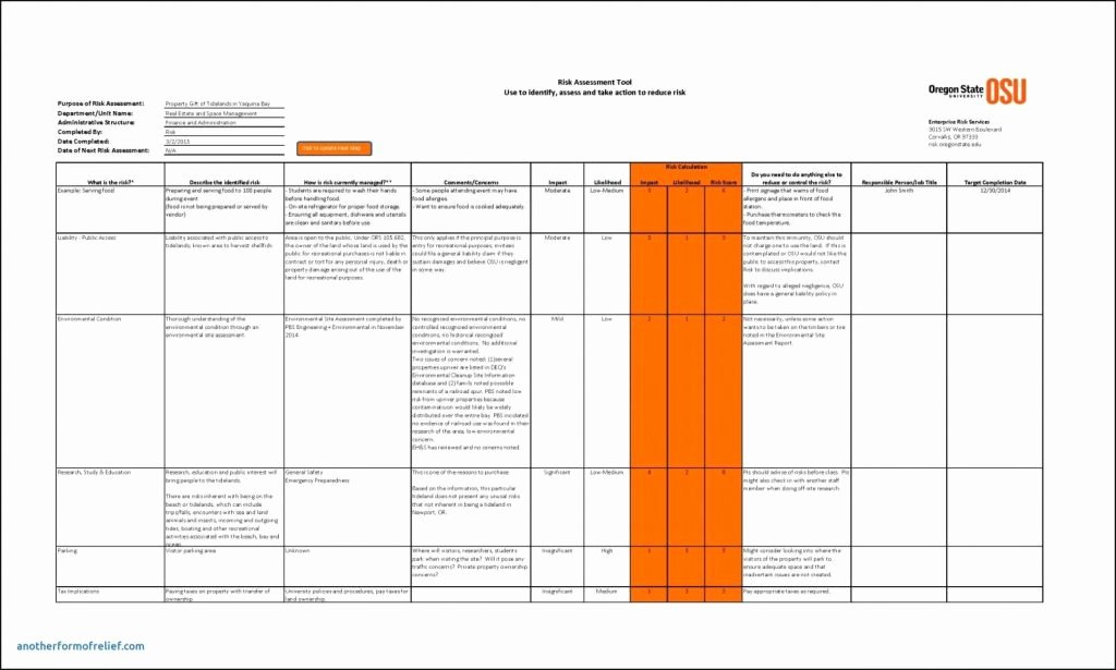 Risk Management Report Template Luxury Risk Management Report Template
