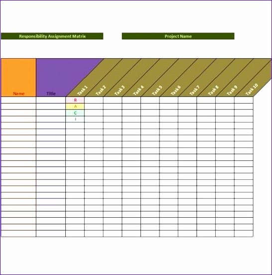 Roles and Responsibilities Template Excel Lovely 14 Project Matrix Template Excel Exceltemplates