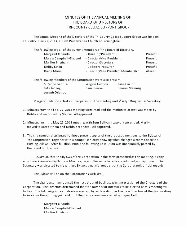 S Corp Meeting Minutes Template Beautiful Corporate Minutes California Template New S Corporation