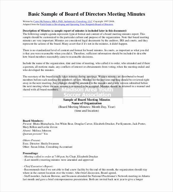S Corp Minutes Template Fresh 26 Minutes Templates Word Excel Pdf