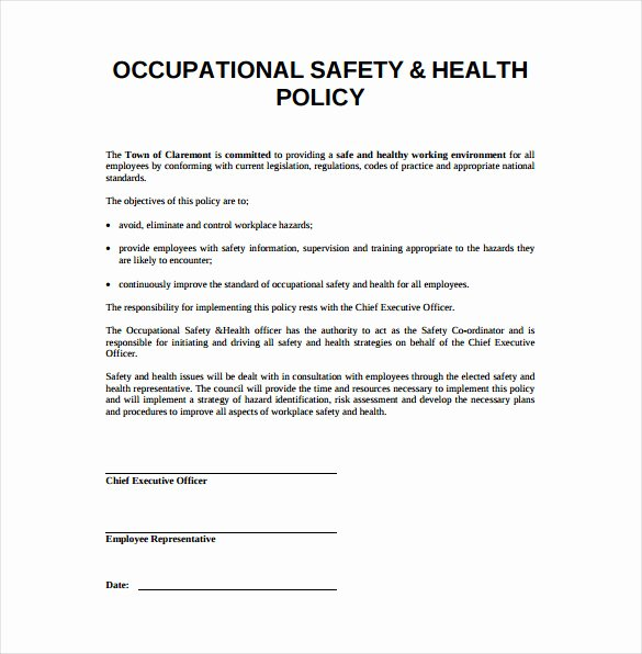 Safety and Health Program Template Awesome Sample Safety Plan Targer Golden Dragon