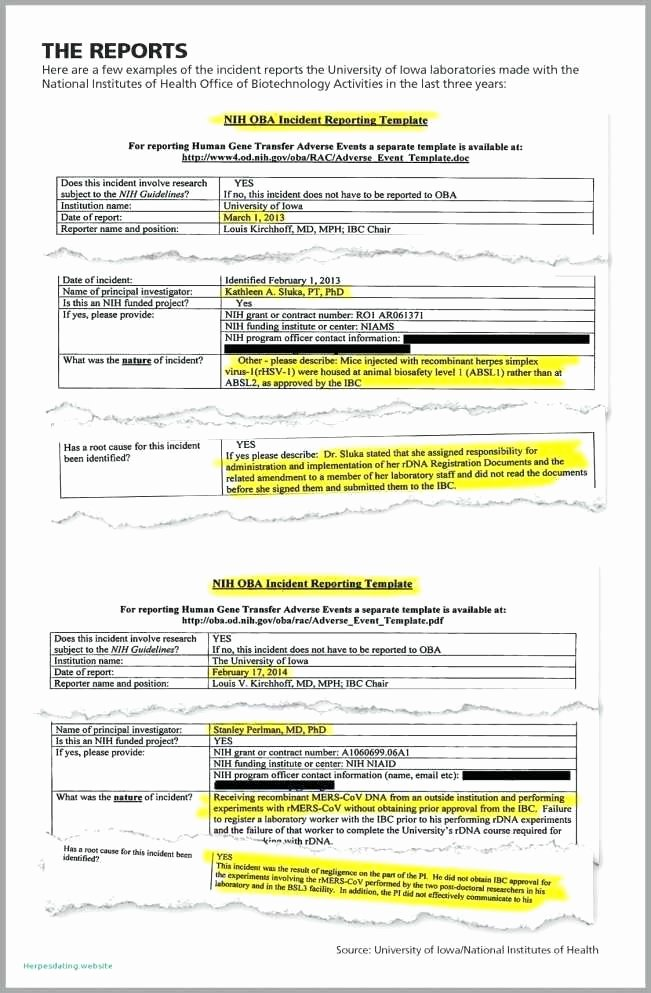 Safety and Health Program Template Unique Safety Audit Template Monthly Health and Safety Audit