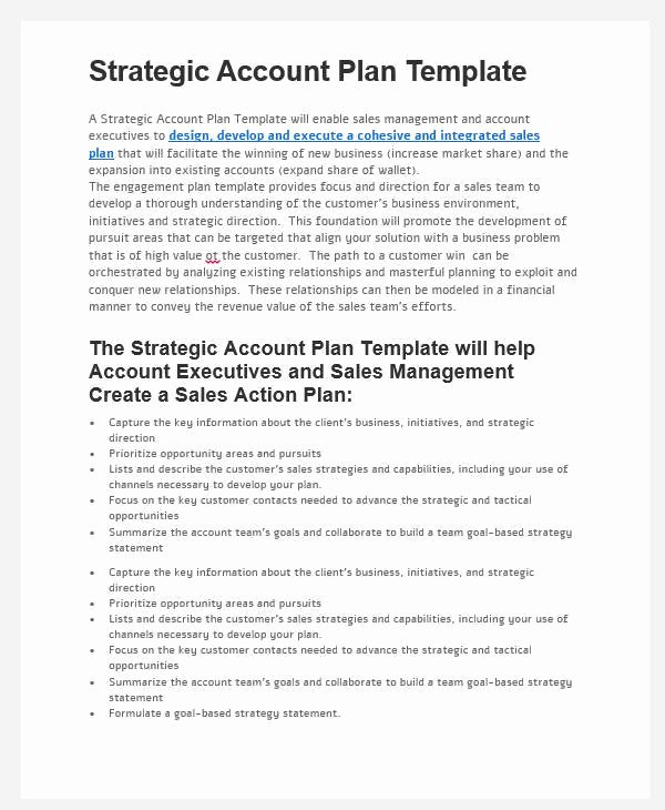 Sales Account Plan Template Awesome 31 Sales Plan formats