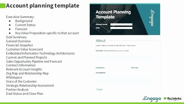 Sales Account Plan Template Beautiful Sales Close Plan Template