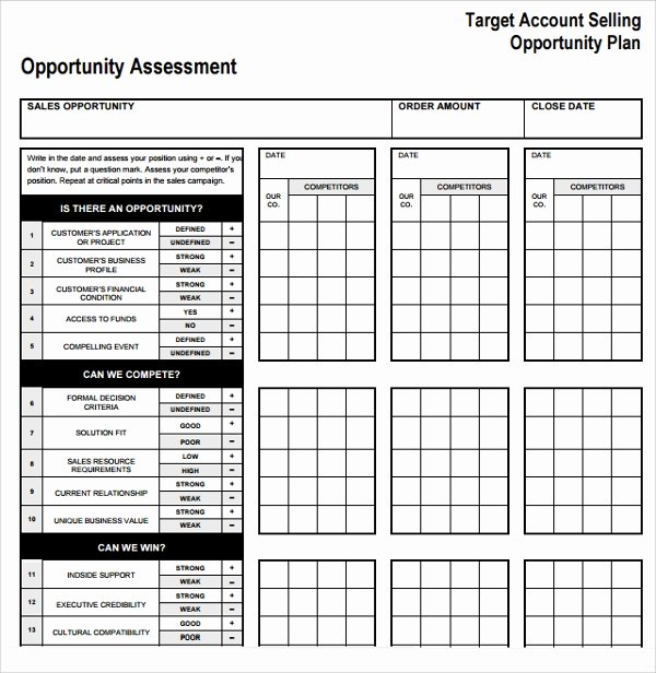 Sales Account Plan Template Best Of Sample Account Plan Template 9 Free Documents In Pdf Word