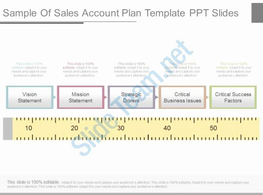 Sales Account Plan Template Fresh View Sample Sales Account Plan Template Ppt Slides