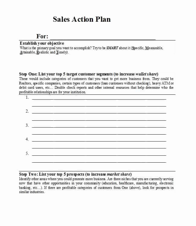 Sales Account Plan Template Inspirational 32 Sales Plan & Sales Strategy Templates [word & Excel]