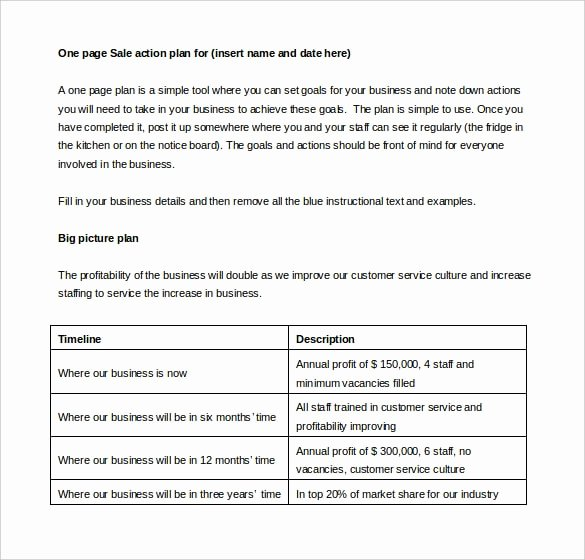 Sales Action Plan Template Awesome 27 Sales Action Plan Templates Doc Pdf Ppt