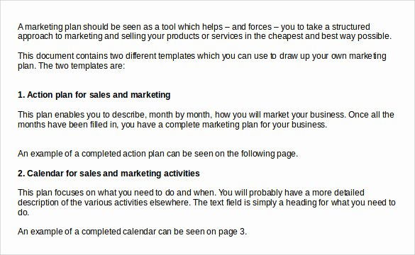 Sales Action Plan Template Best Of 8 Sales Action Plan Templates to Download