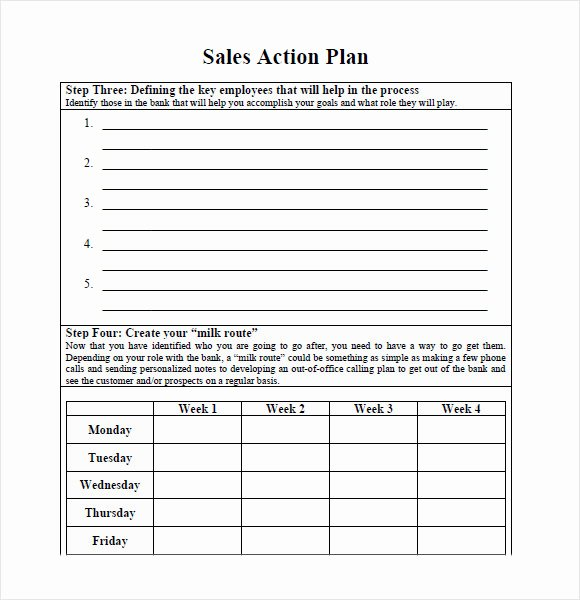 Sales Action Plan Template Lovely 10 Sales Plan Samples
