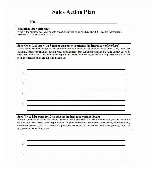 Sales Action Plan Template Unique Sample Sales Action Plan 11 Example format