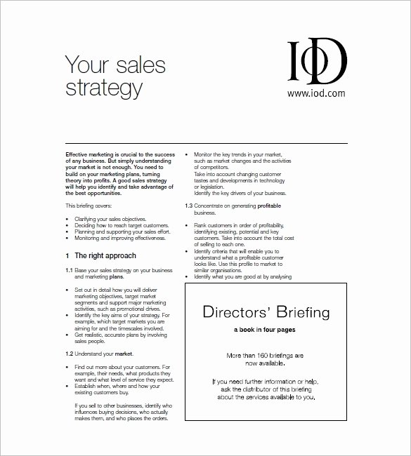 Sales and Marketing Plan Template Beautiful Sales and Marketing Plan Template