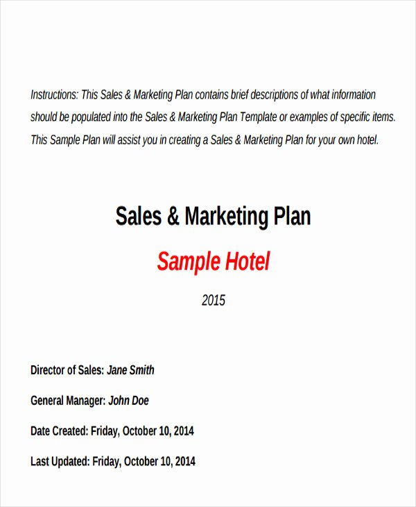 Sales and Marketing Plan Template Elegant Hotel Sales Plan Templates 9 Free Word Pdf format