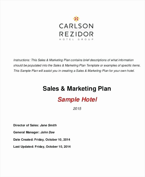 Sales and Marketing Plan Template Inspirational Marketing Strategy Document Template Plan Example Doc the
