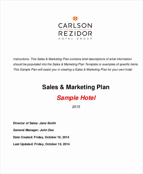 Sales and Marketing Plan Template Luxury 25 Marketing Plans In Pdf